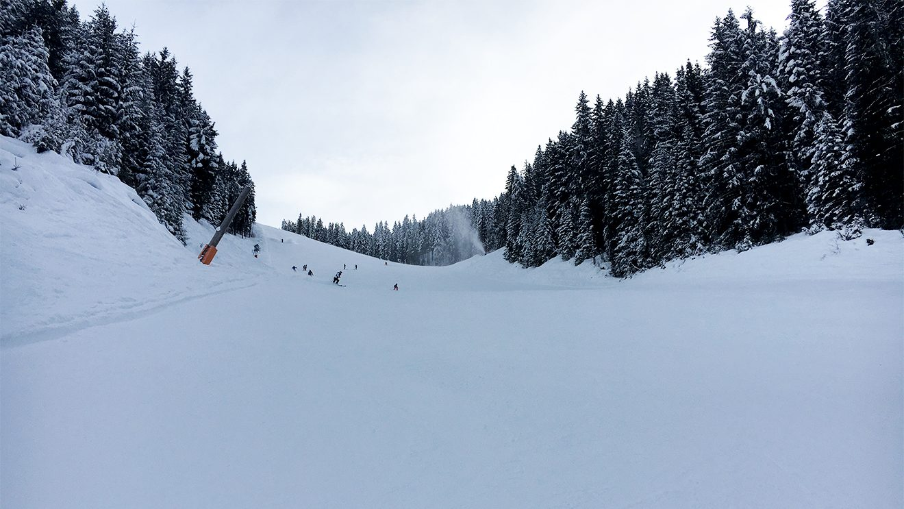 Schattig und steil - so präsentiert sich der Panorama-Steilhang © Skiing Penguin