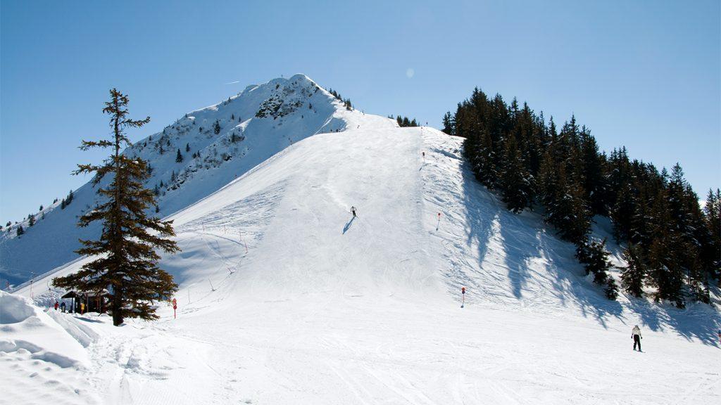 Über die Höhningerabfahrt zum Talkaser © Skiing Penguin