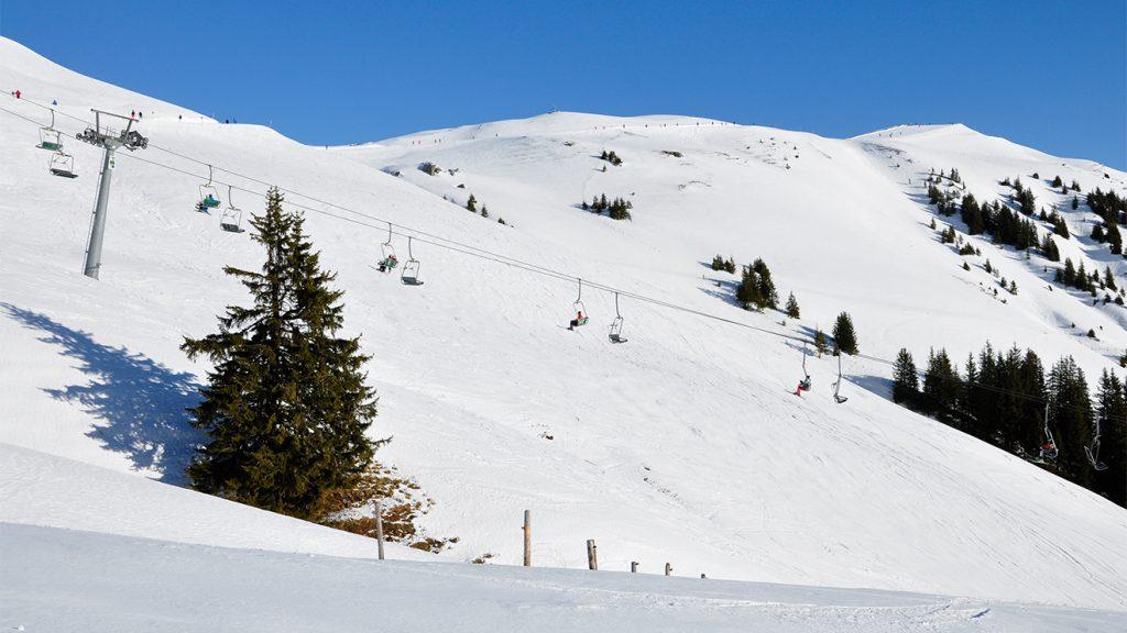 Die Winter sind in den letzten Jahren kälter geworden @ Skiing Penguin