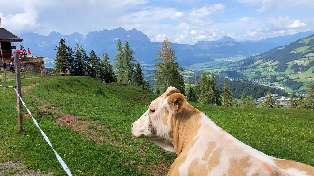 Ein typischer Juni-Tag auf der Seidlalm © Helmuth Obermoser