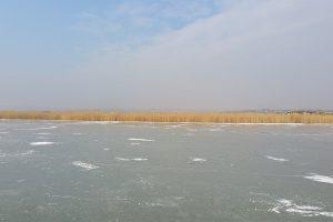Winteridylle am Neusiedler See @ Richter