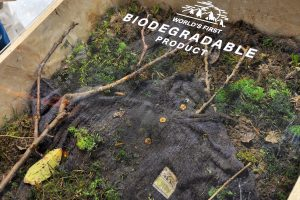 Vergraben und verschwinden - das Shirt von PICTURE ist biologisch abbaubar © Skiing Penguin