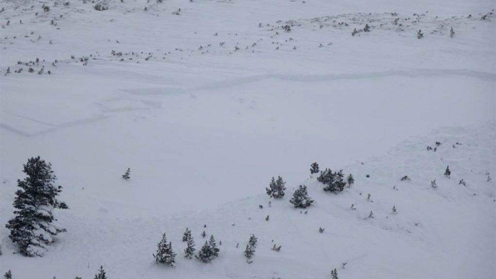 Schneebrettlawinen innerhalb von Neu- und Triebschneeschichten © Lawinenwarndienst Tirol / Hugo Reindl