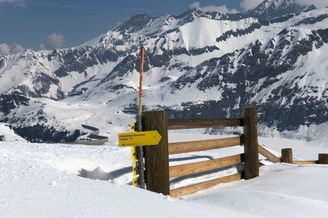 Schnee in Hülle und Fülle - wie man am Wegweiser sehen kann © Skiing Penguin