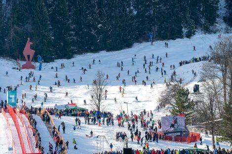 Der ganz normale Skibetrieb rechts neben der Streif während des Rennens © Skiing Penguin