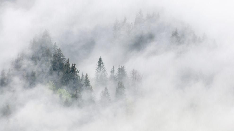 Die Nebel nach der Corona-Krise werden sich lichten © Skiing Penguin
